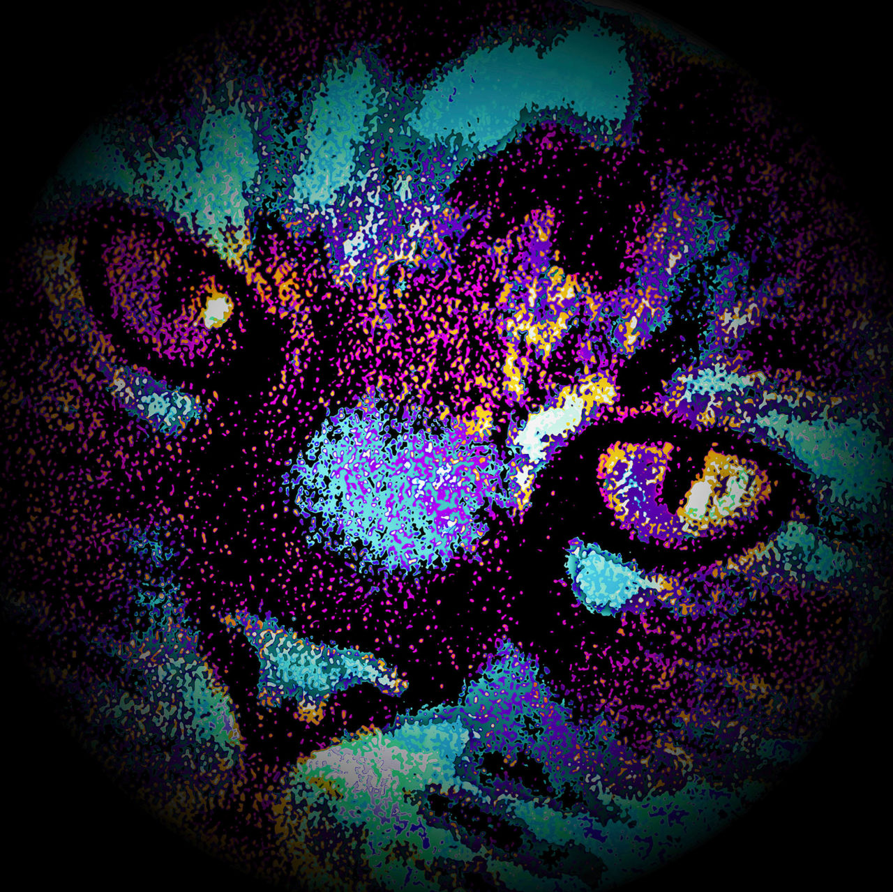 Kali Portrait of a Cat - Annamaria Carfaro