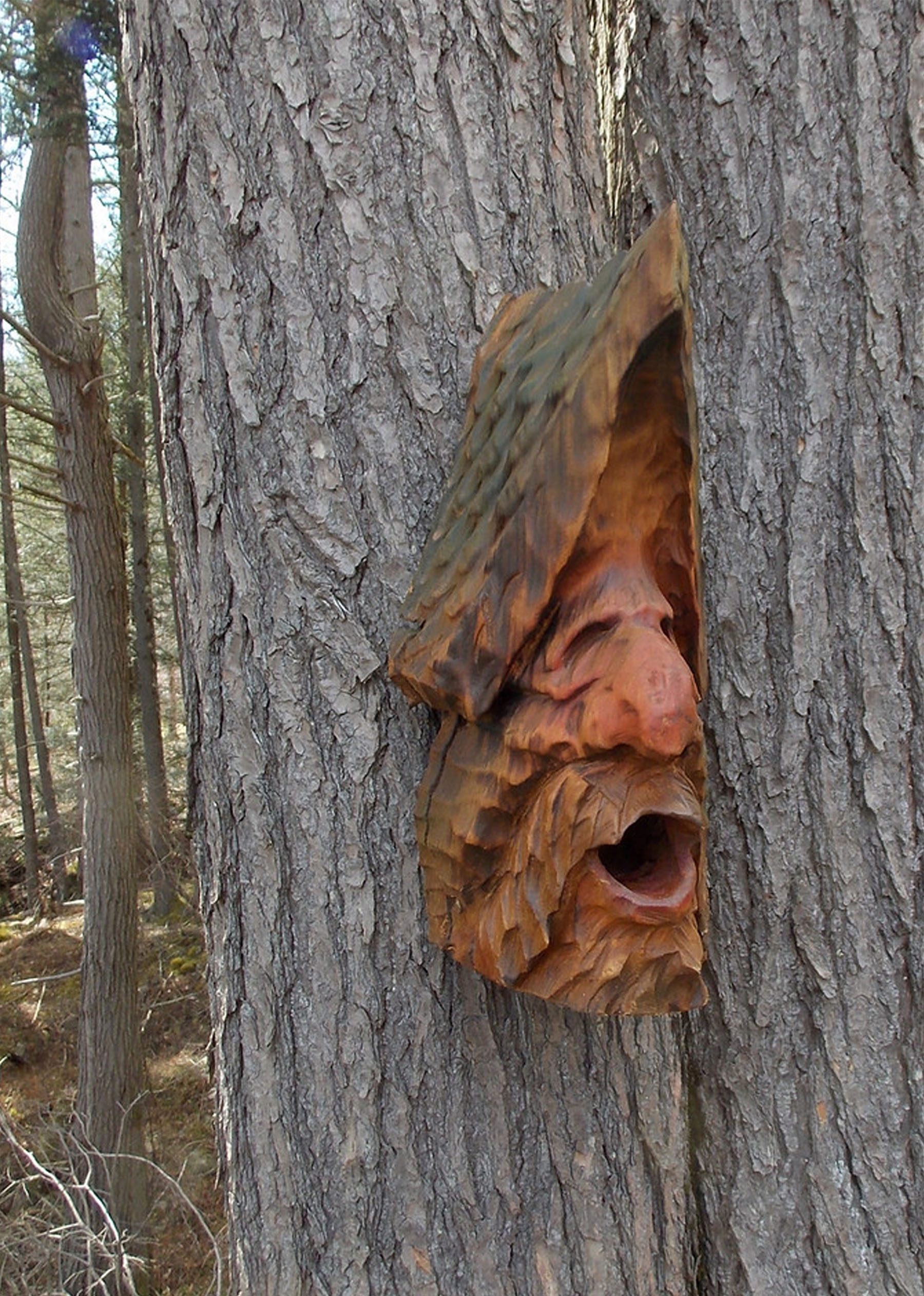 Harnett-Designs-Woodworking-Chainsw-Carved-Birdhouse
