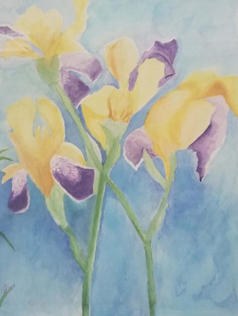 Irises On East Boad Street - Santana