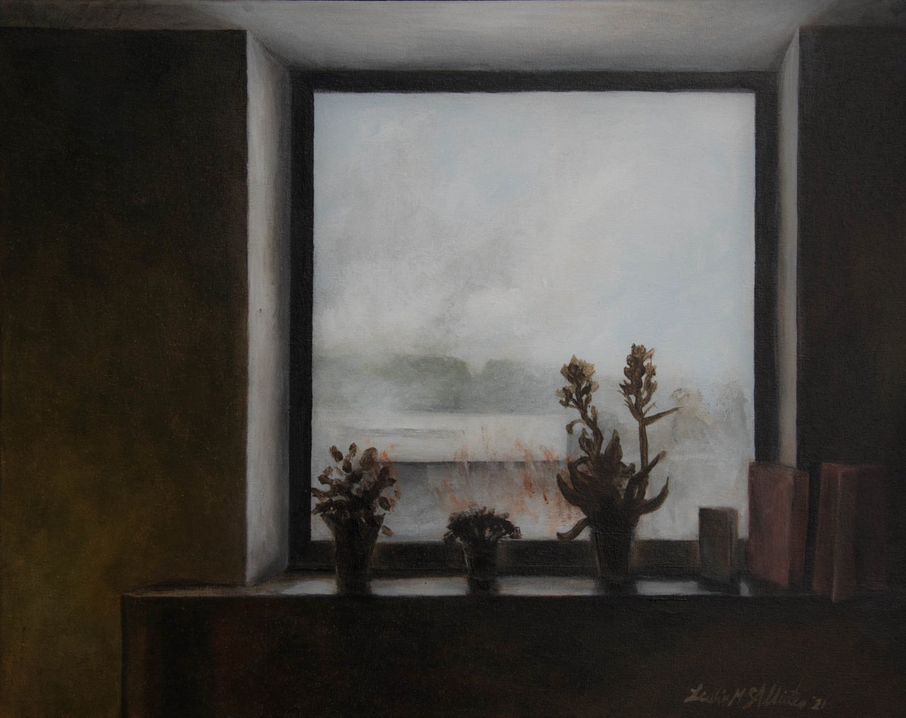 View from a loved ones hospital room - Leslie McAllister